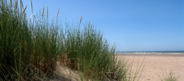 Rencontre plage merville